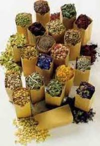 лечение атеросклероза травами